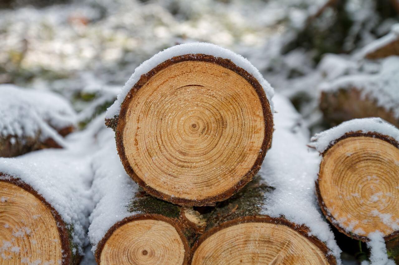 wood-3163292_1280_packhelp