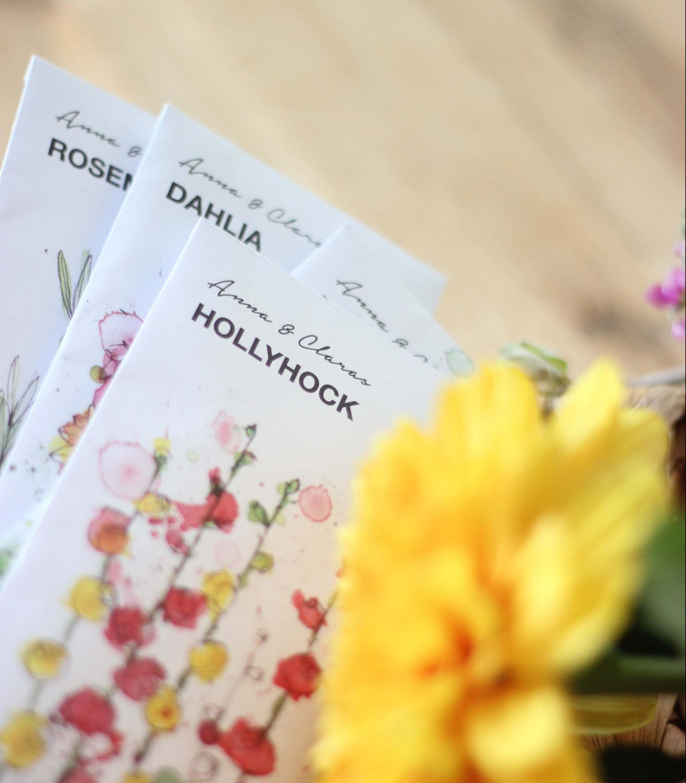 Biglietti hollyhock con fiore giallo