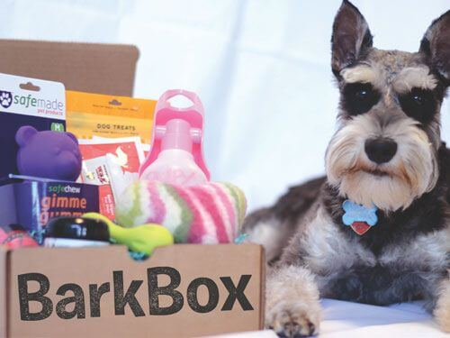 example of bark box subscription box