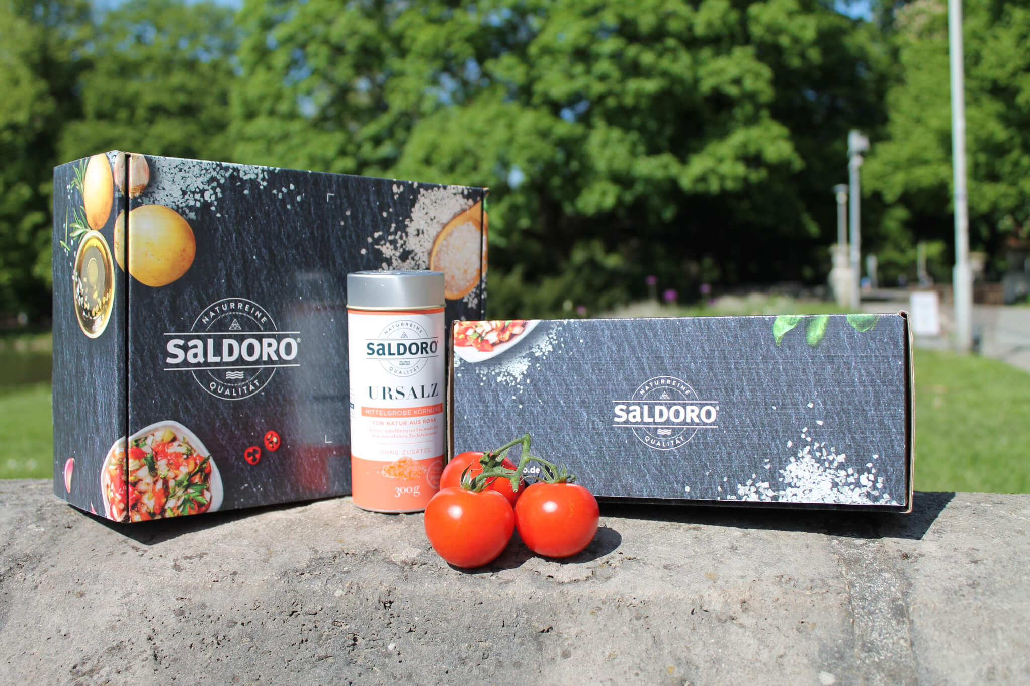 Saldoro full color mailer box