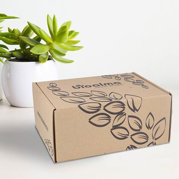 nachhaltiges Verpackungsdesign Eco Karton