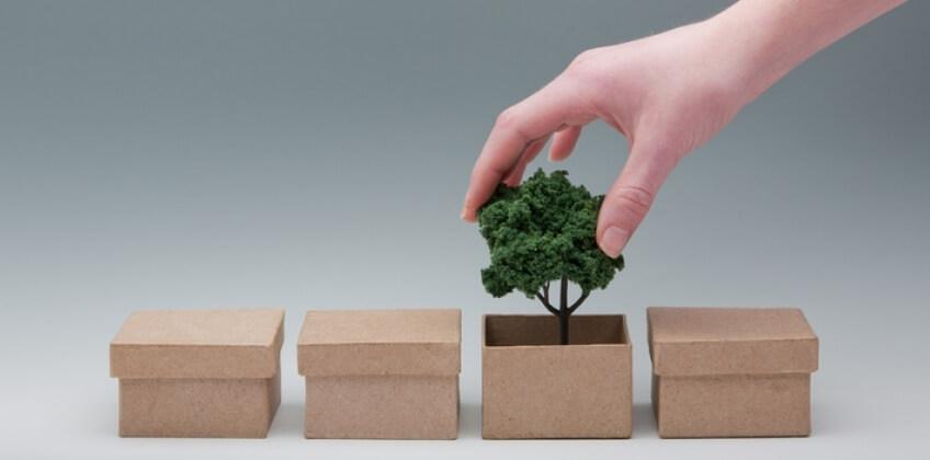 Karton: Nachhaltiger Dauerbrenner unter den Verpackungen
