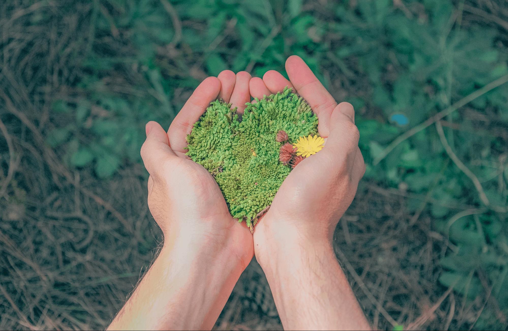 teener una empresa sostenible es sinónimo de cuidar el planeta