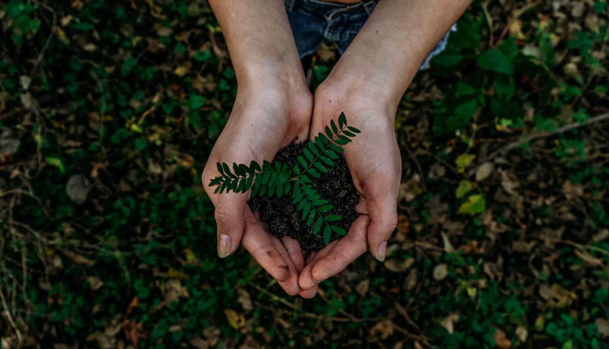 udržitelné ekologicke balení kompostovalne