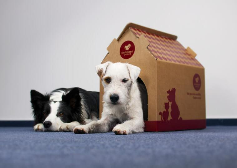 poštovní krabice psí bouda