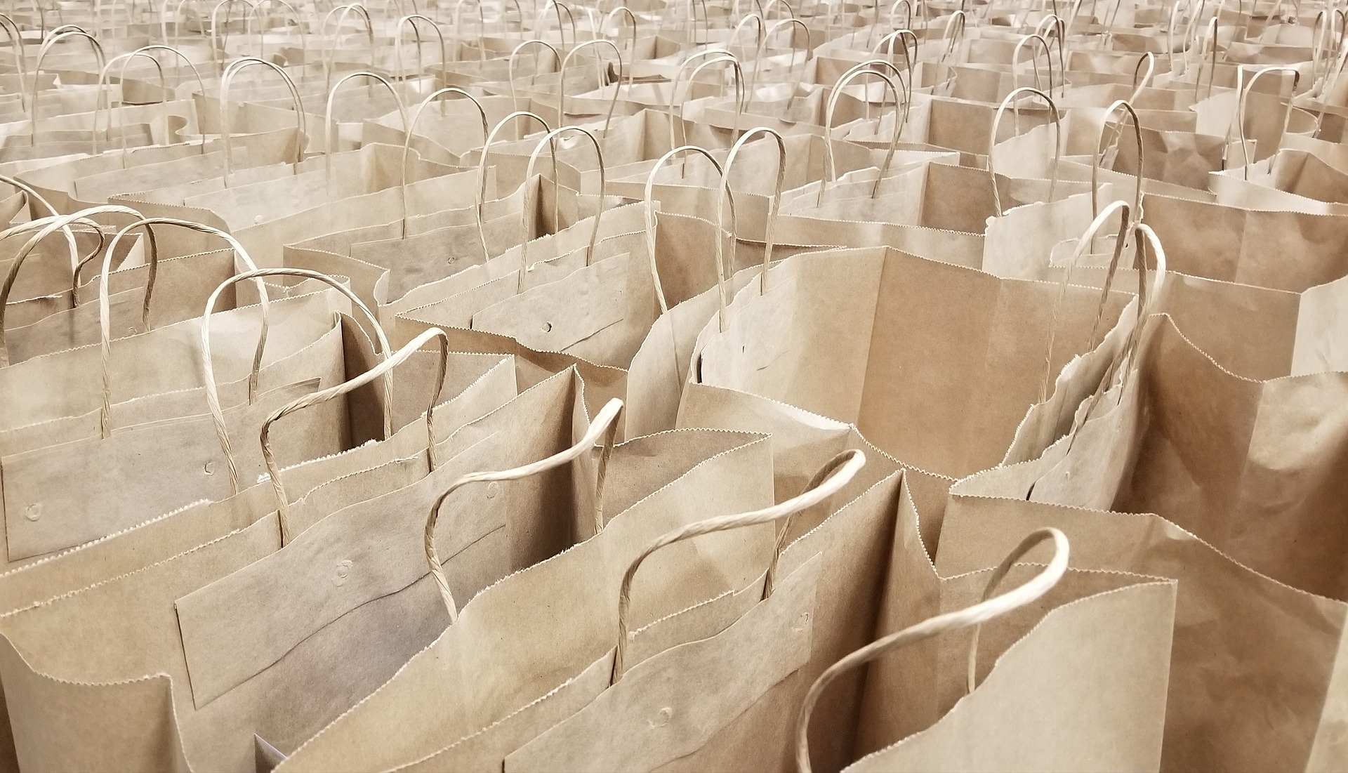 las bolsas de cartón fueron el primer packaging semiflexible