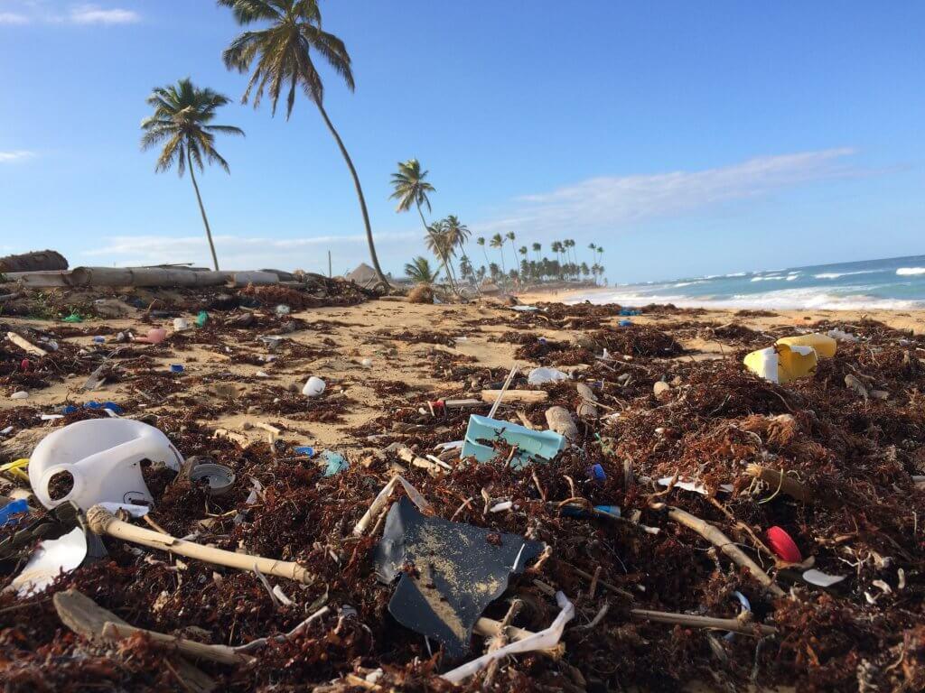 ridurre impatto ambientale