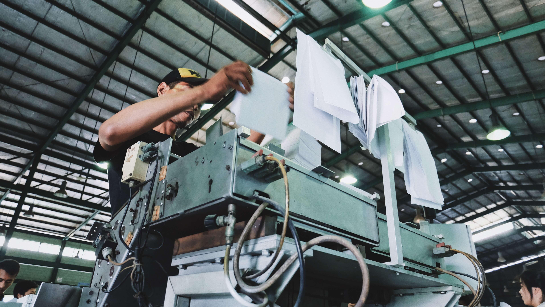 fabbrica di carta