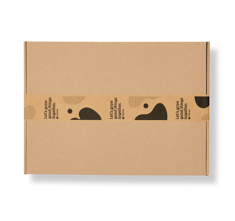 caja postal protegida con cinta de embalaje