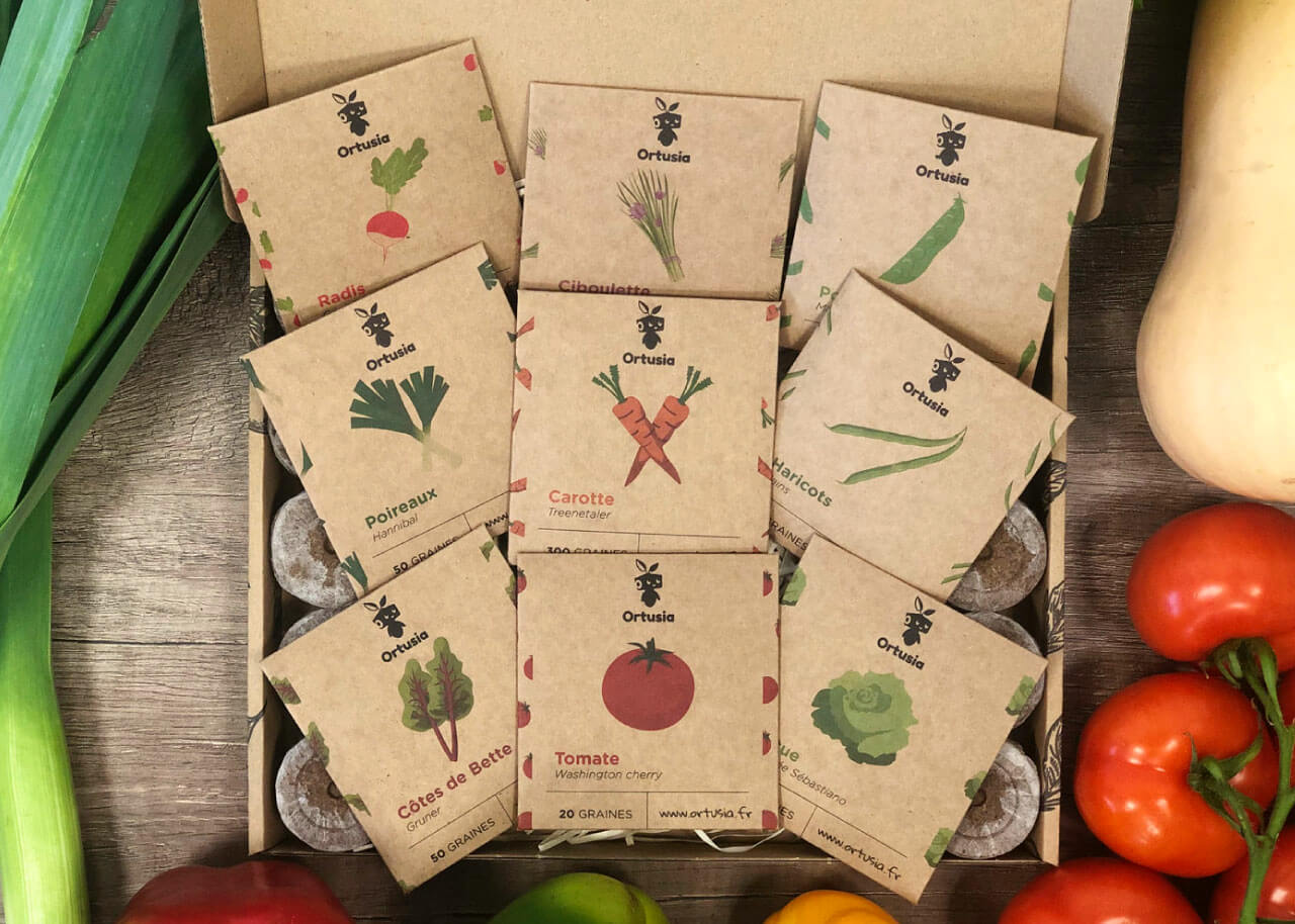 Kit de cartón que contiene semillas ecológicas