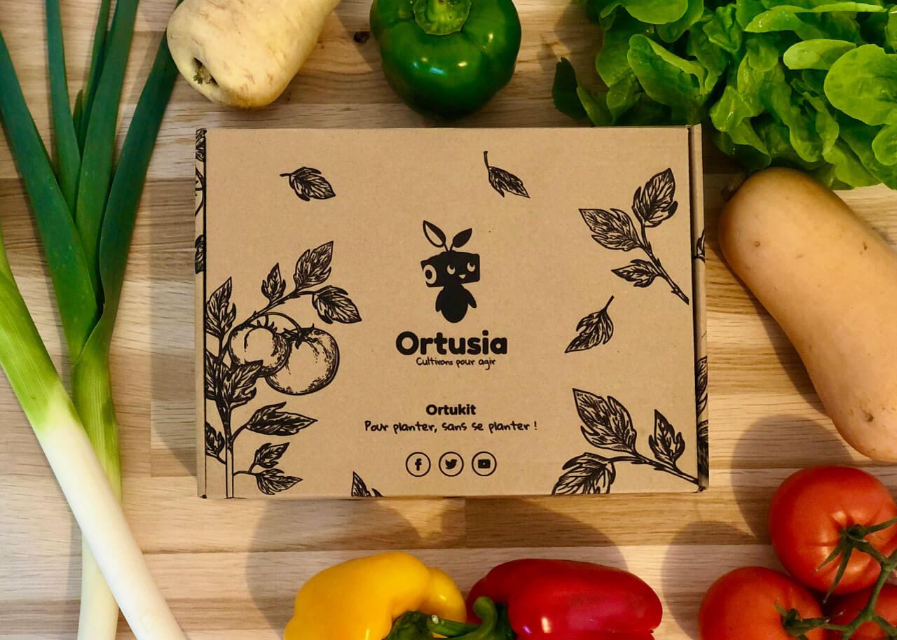 caja de cartón junto a varias hortalizas