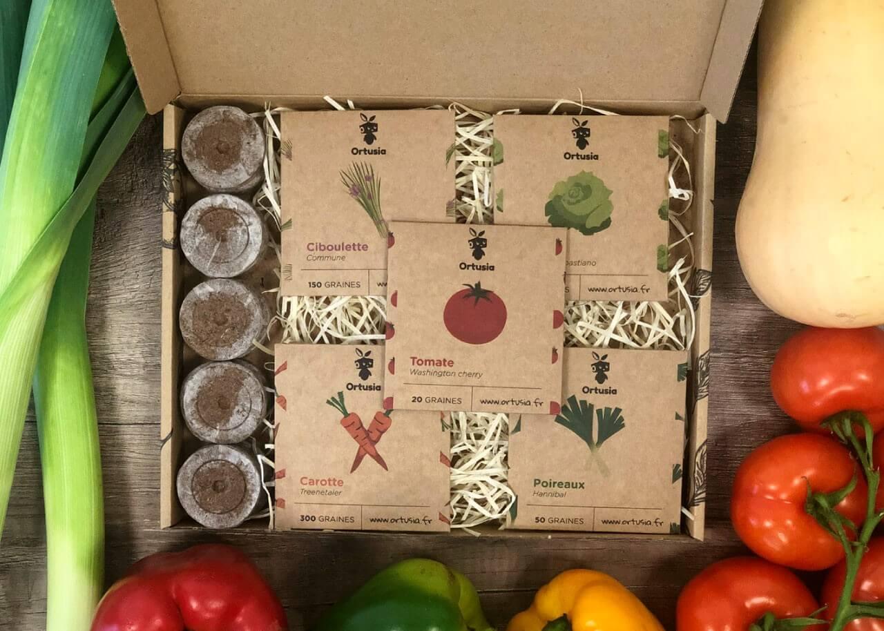 caja de cartón con semillas para cultivar hortalizas