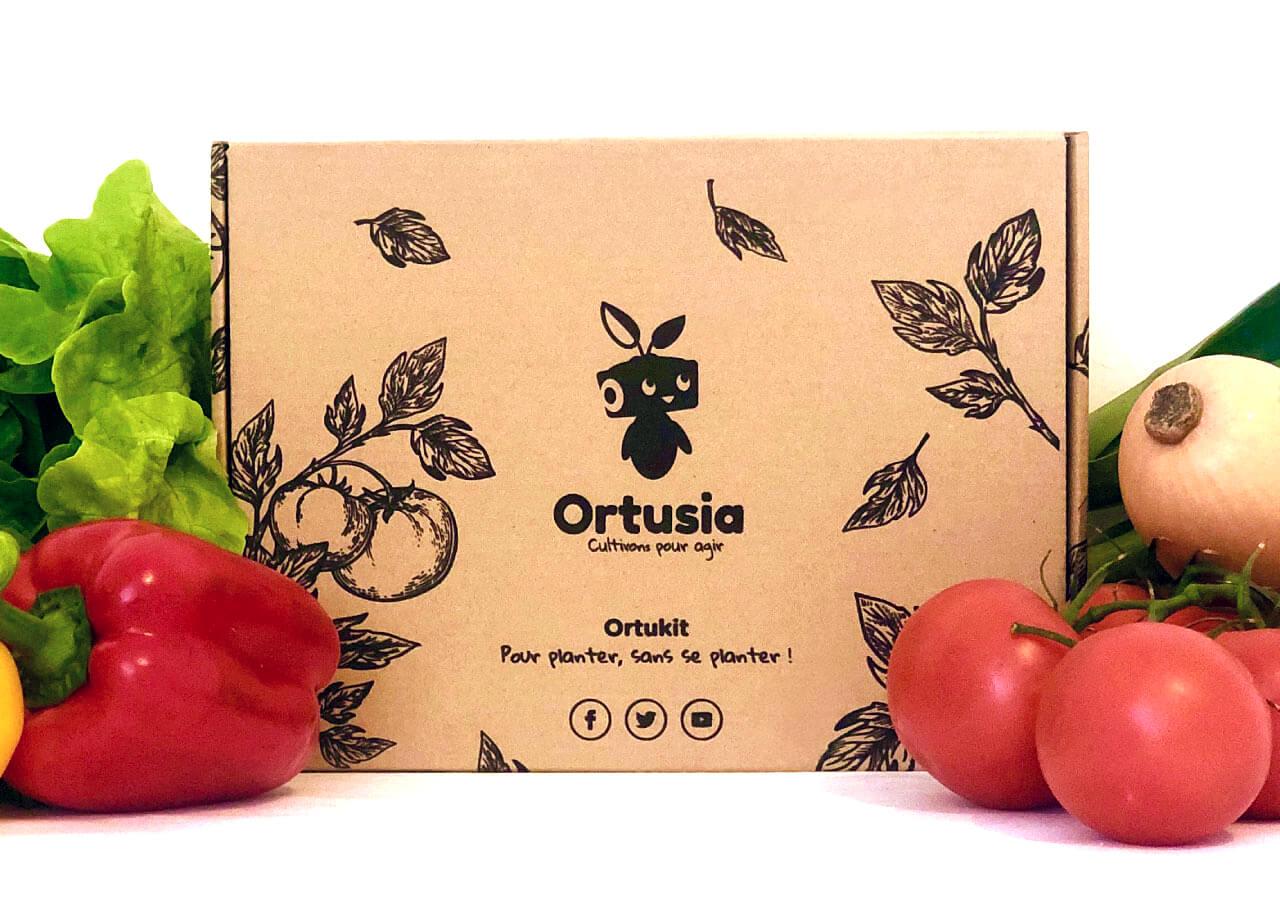 caja de cartón con varias hortalizas alrededor
