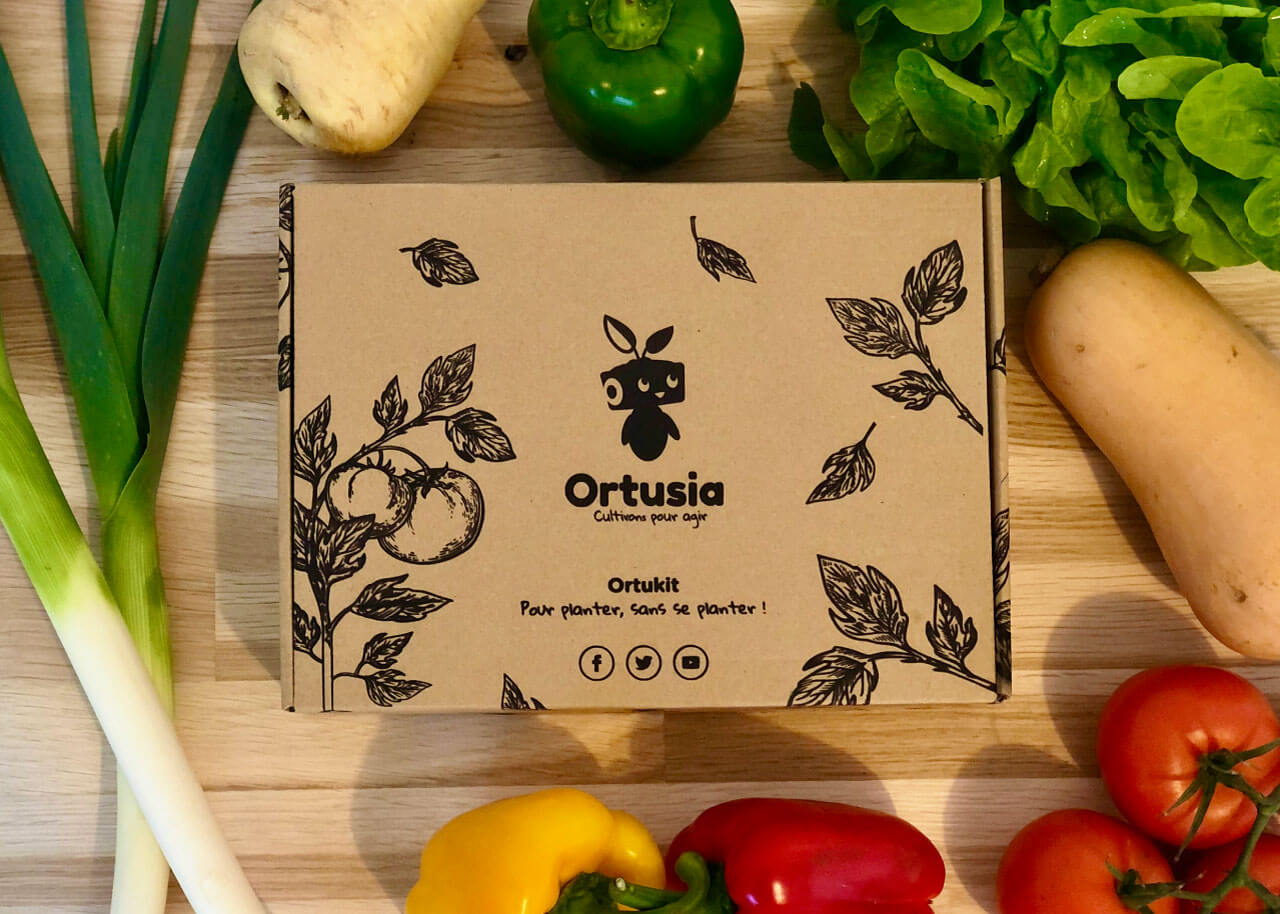 Boîte de l'Ortukit