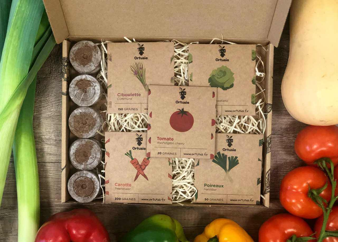 Ortusia kartonové vybavení krabice
