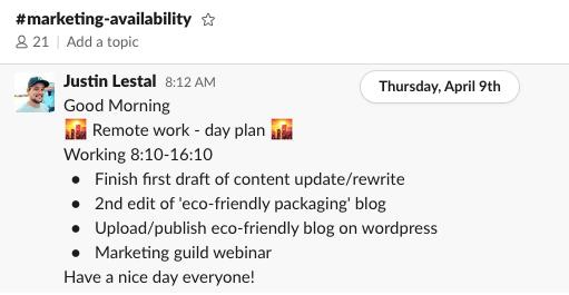 Screenshot of remote work day plan