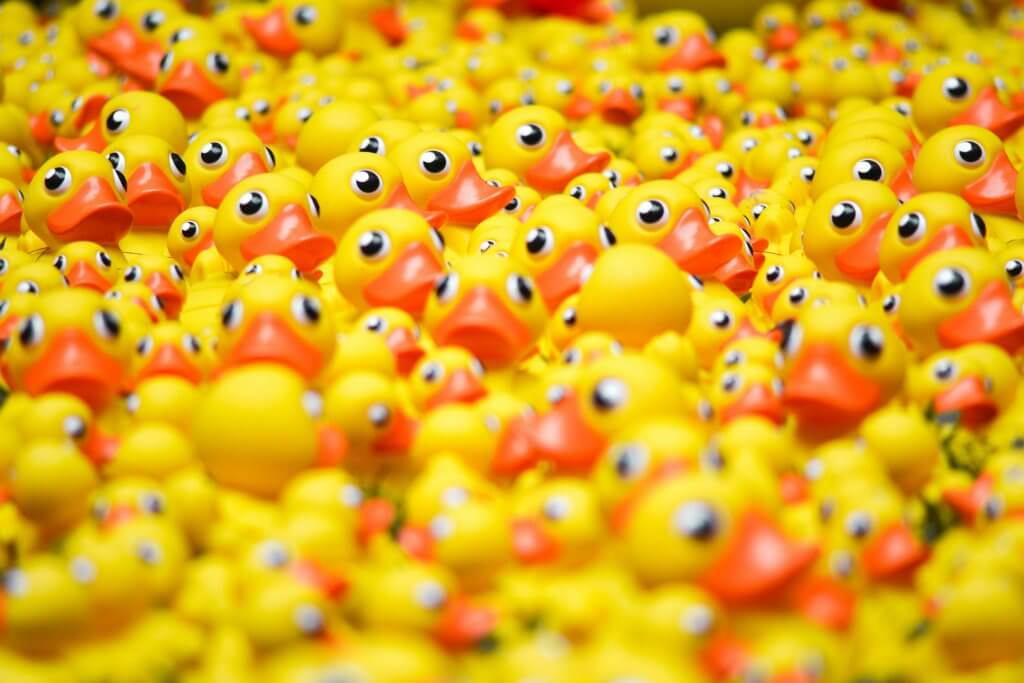 Pile of yellow rubber ducks