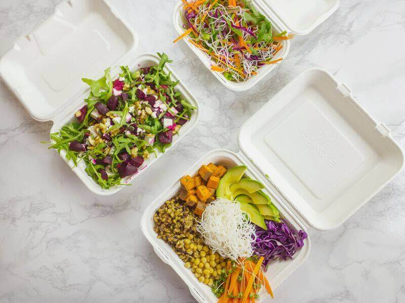 open bagasse tableware boxes filled with salads