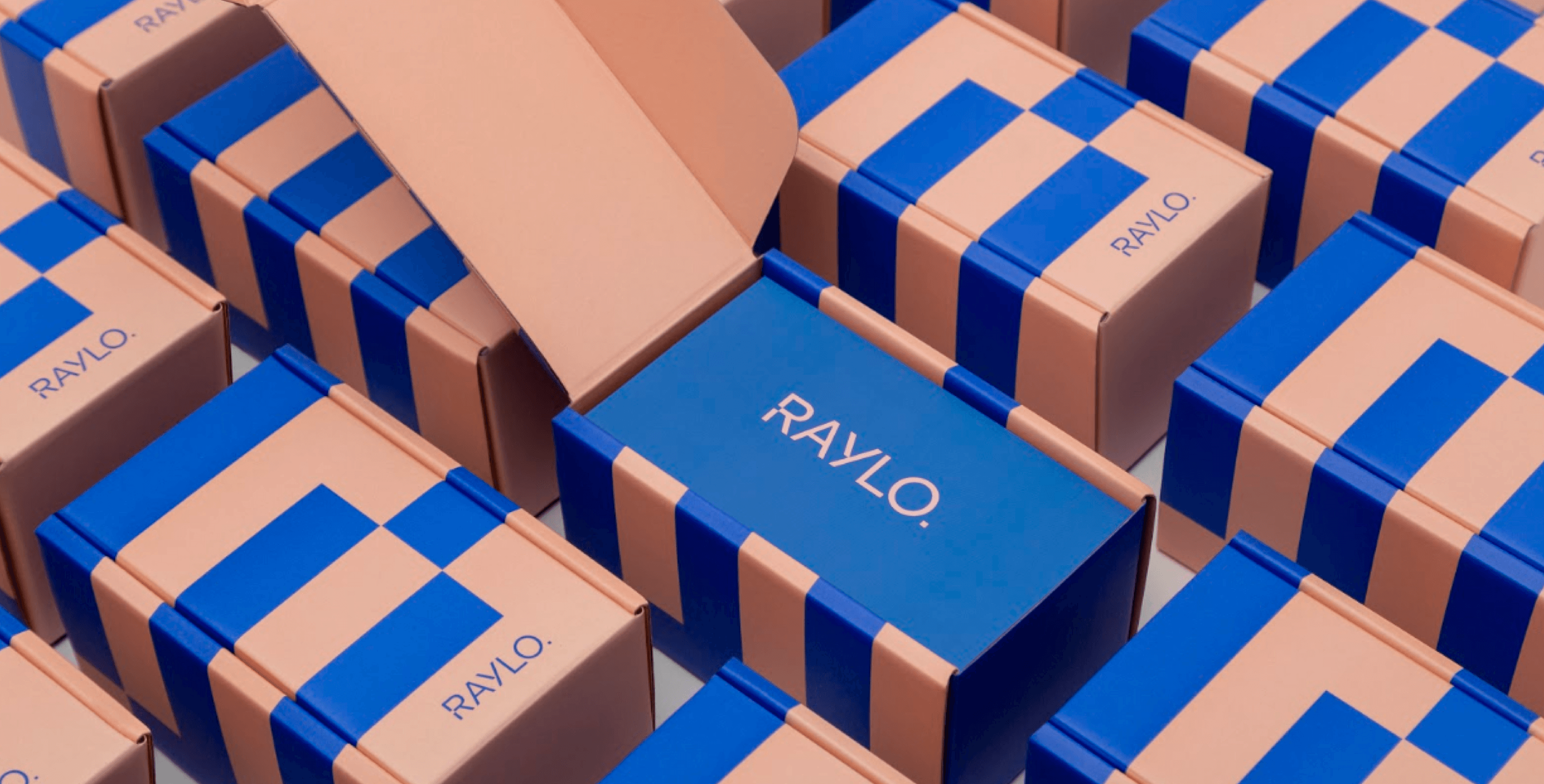 raylo - printed boxes for shipping - packhelp case study