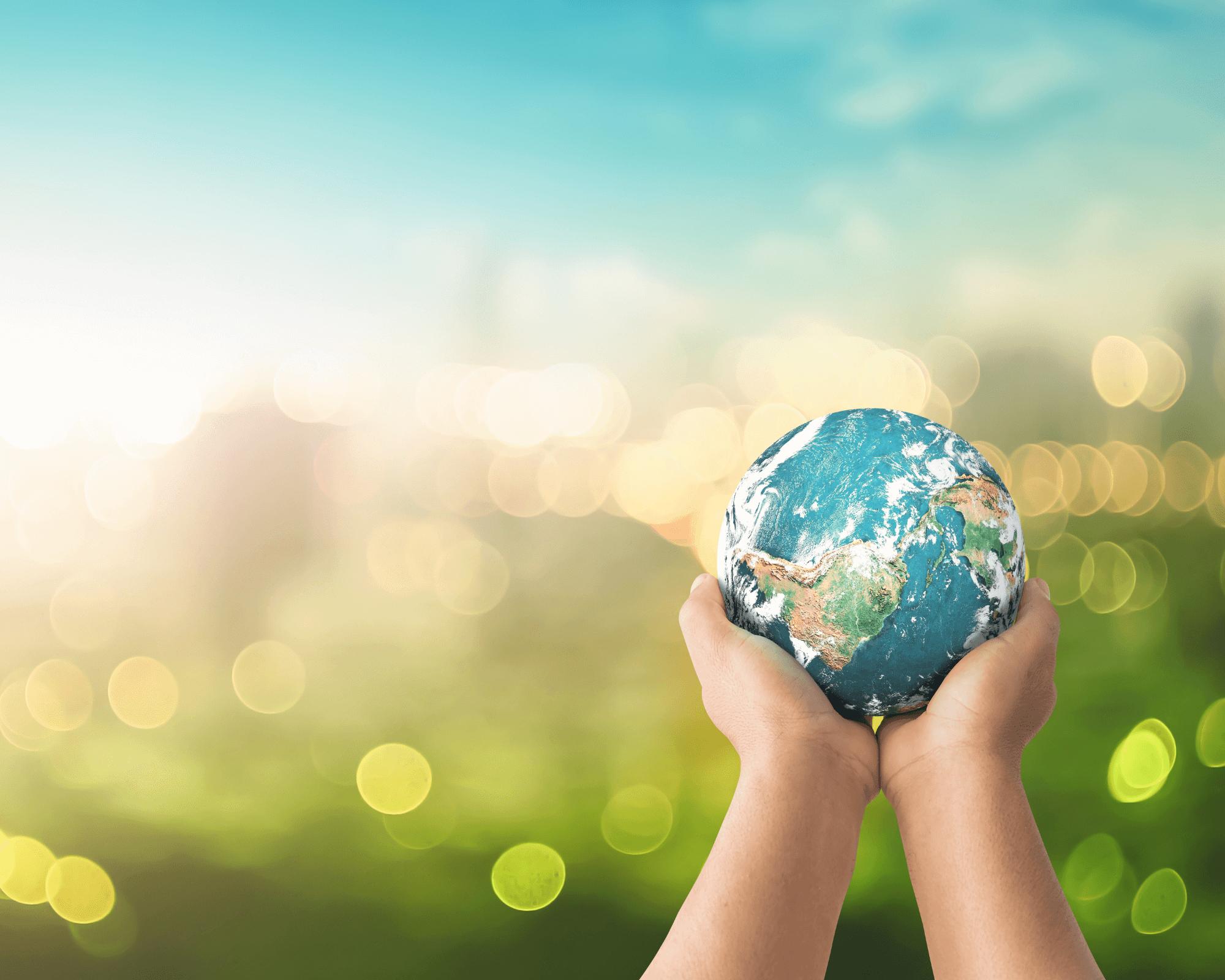 hay que trabajar por un mundo con empresas sostenibles