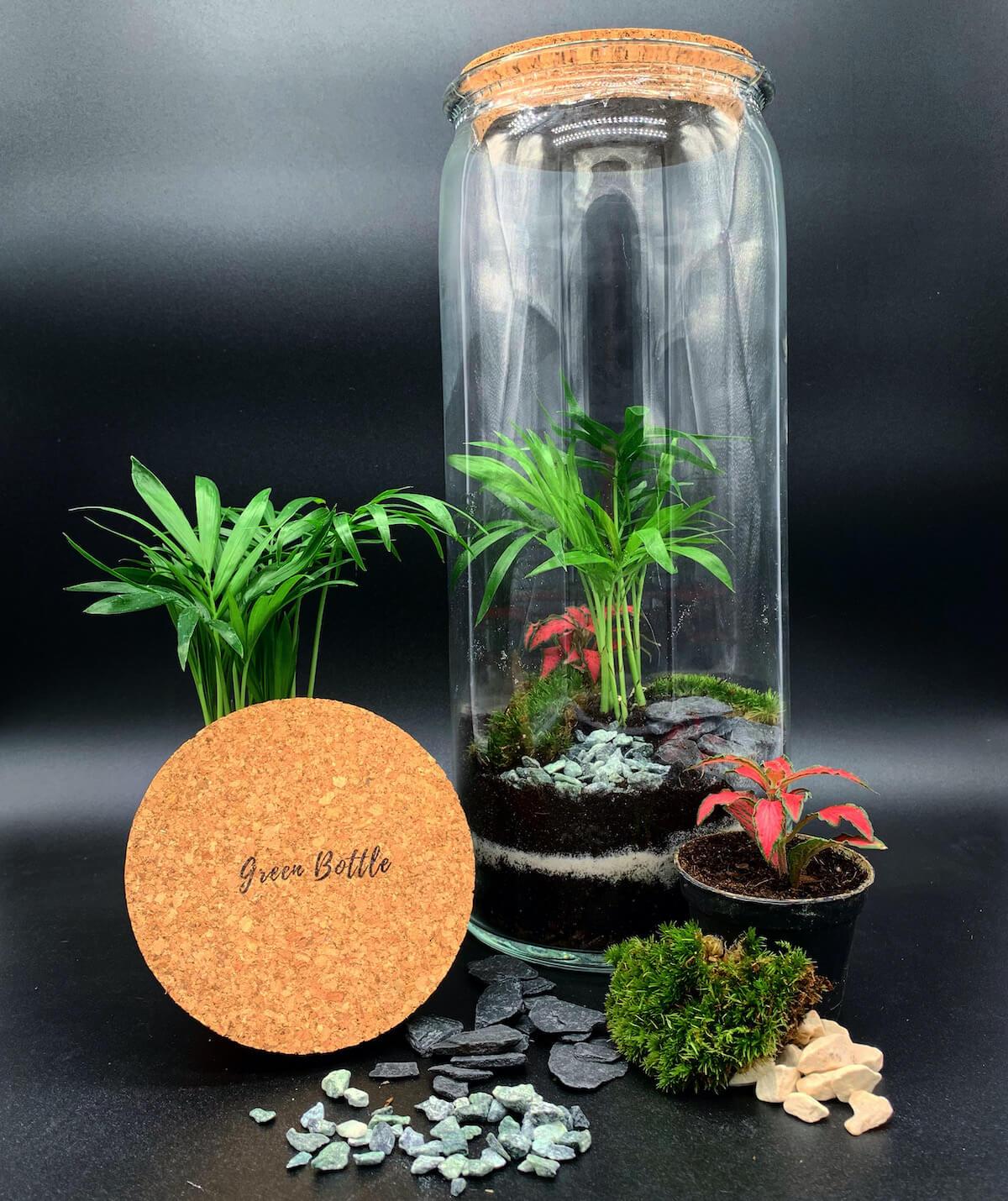 Terrarium avec tous ses éléments de Green Bottle Design