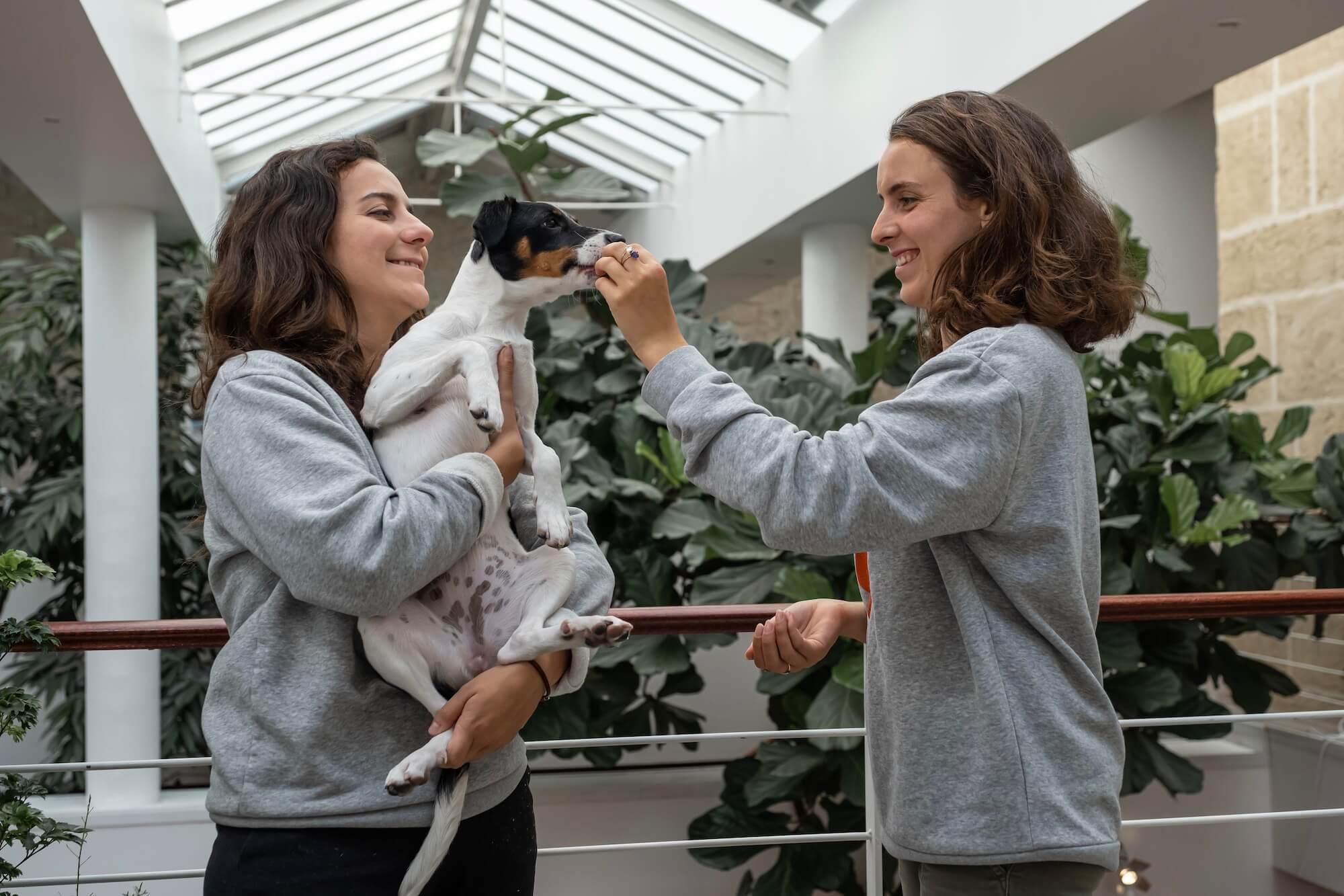Fondatrices de Tomojo, croquettes pour animaux éco-responsables