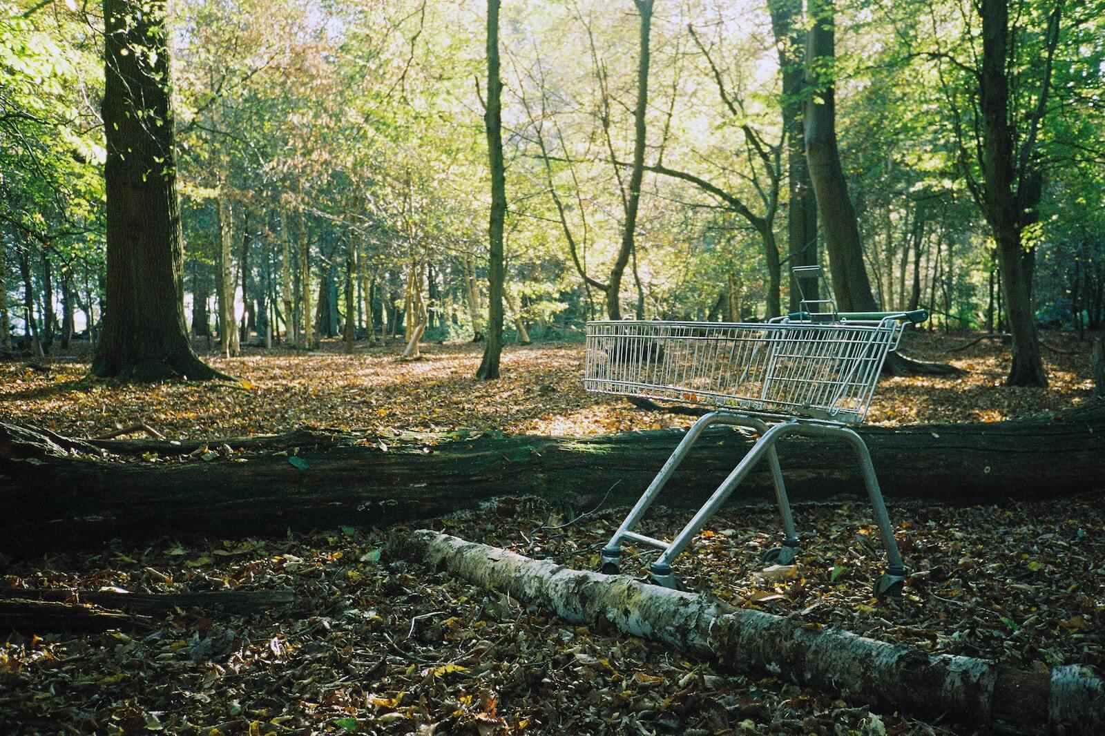 Caddie abandonné dans la forêt