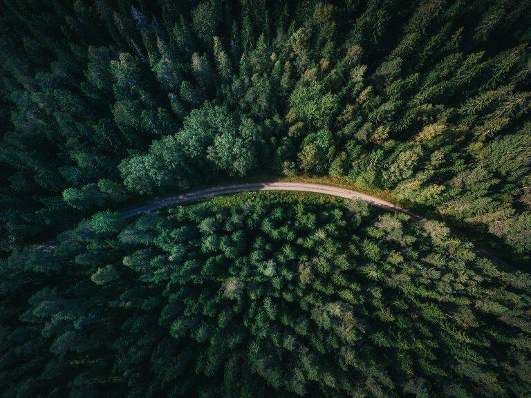 Nachhaltigkeit im E-commerce – neue Wege und Lösungen