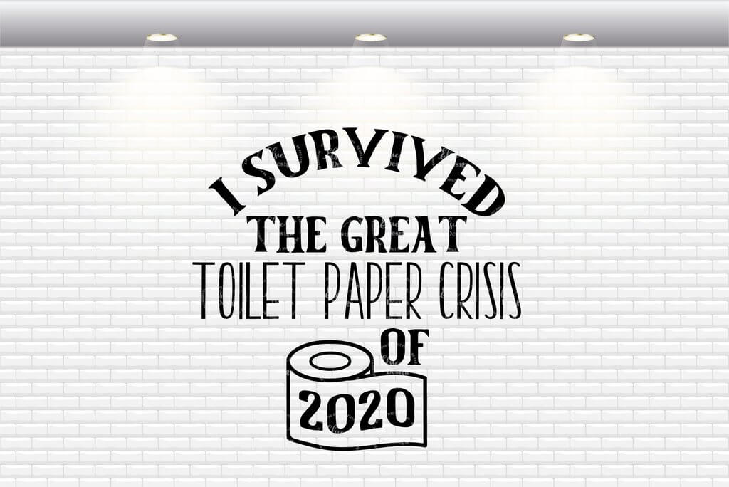 i survived the toilet paper crisis