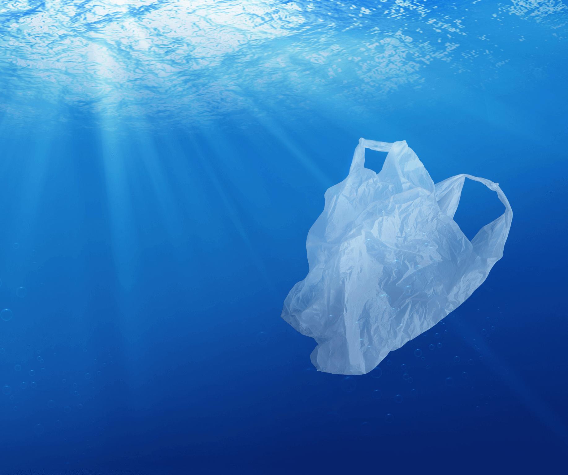 la normativa sobre bolsas de plástico es necesaria para reducir este material en los océanos