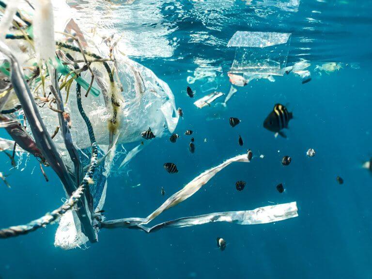 En hållbar resa: till en grön förpackning